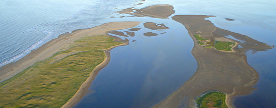 The Kouchibouguac National Park is less than an Hour's drive from Le Griffon Bed & Breakfast.